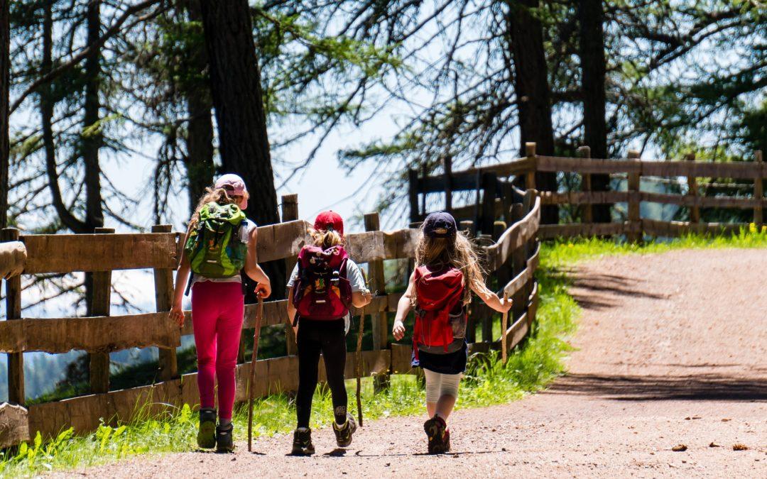 Wandernde Kinder auf Waldweg