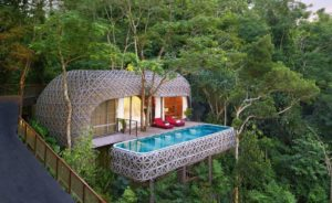 Unterkunft im Regenwald